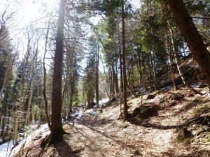 wandern-kalterer-see-abstieg-mendelpass-copyright-lisa-k-schuermann