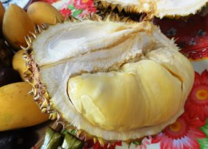 zwischenstopp-authentisch-reisen-asien-durian-copyright-lisa-k-schuermann