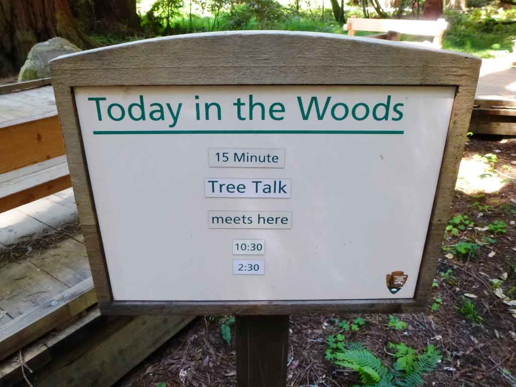 wandern-usa-muir-woods-tree-talk-coyright-lisa-k-schuermann